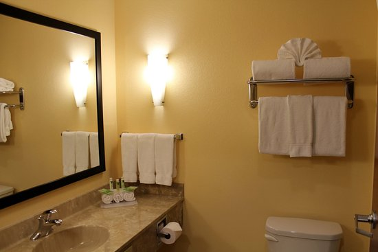 Holiday Inn Express & Suites - Harrisburg West: Guest Bathroom