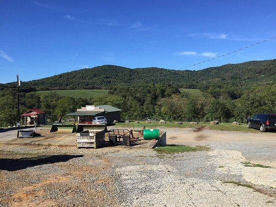 Bedford, VA: Johnson's orchard