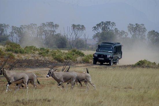 Foto de Meru National Park