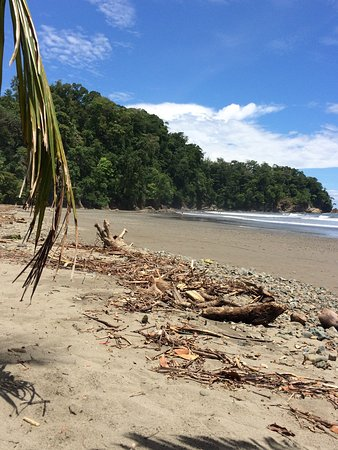 Ballena, Costa Rica: photo3.jpg