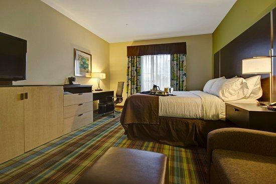 Holiday Inn Christiansburg Blacksburg: King Bed Guest Room