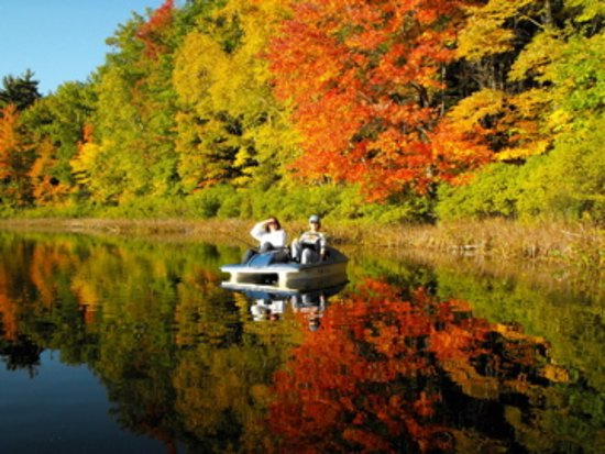 Mecosta, MI: The beauty of Autumn on Bluegill Lake