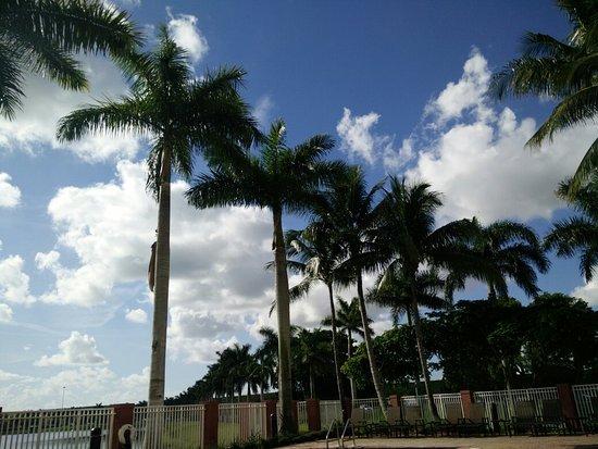 Hampton Inn & Suites Ft Lauderdale / Miramar: IMG_20160805_093535_large.jpg
