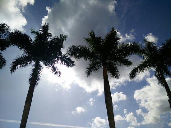 Hampton Inn & Suites Ft Lauderdale / Miramar: IMG_20160805_093532_large.jpg