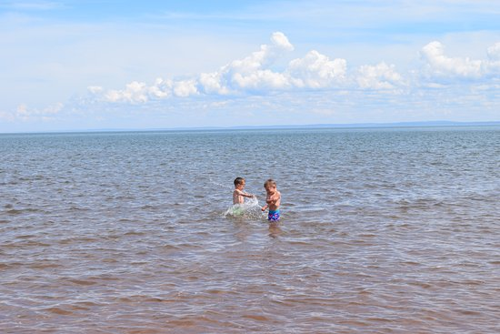 Canning, Καναδάς: Enjoying the warm water of the Minas Basin (low tide).