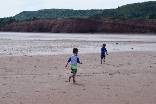 Canning, Canadá: Running the mudflats before the tide comes back in.