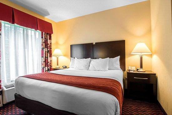Comfort Inn & Suites Tunkhannock: Guest room