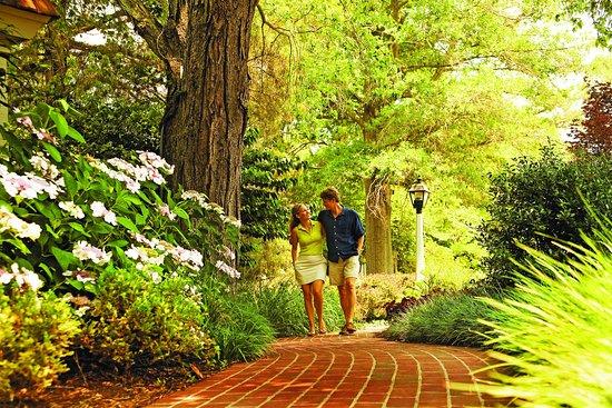 Irvington, VA: HRCouple Walking Arm In Arm On Path