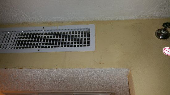 Sunny Isles Beach, FL: Moldy Air Vents with Leaks