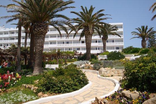 Bilde fra Nissi Beach Resort