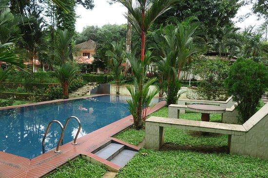 Karimannoor, India: Pool