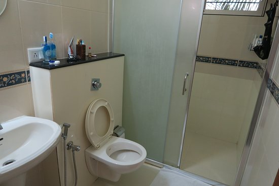 Karimannoor, Hindistan: Bathroom