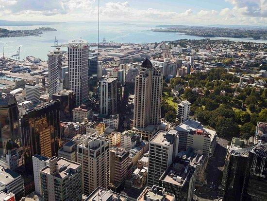 Ellerslie, Yeni Zelanda: Other