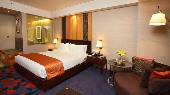 Holiday Inn New Delhi Mayur Vihar Noida: 1 King bed Suite Non Smoking