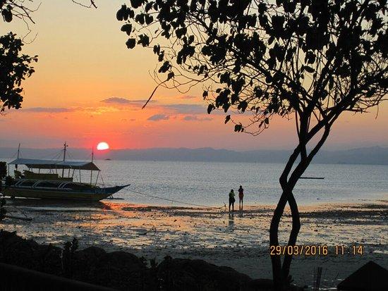 Nalusuan Island Resort: IMG_0127_large.jpg