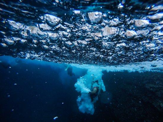 Burbujas Coasteering Fun Costa Blanca Bild Von Xabia Activa