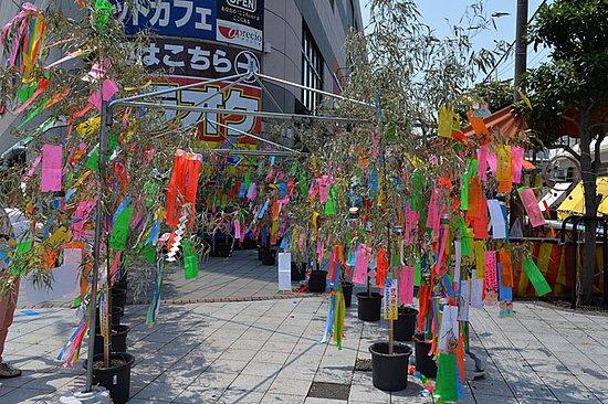 Warabi, Japón: 笹へ七夕飾り