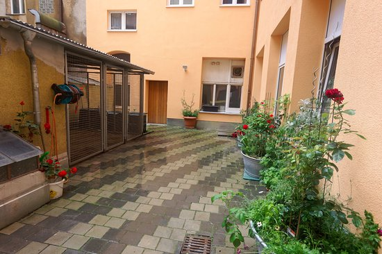 Hotel Garni Probst: 29_neu_Innenhof_SigmaUWW_PentaxK3_6016x400_RMB