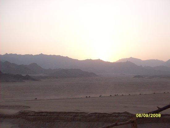 Na'ama Bay : motorata deserto