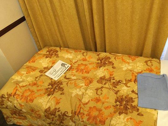 Toyoko Inn Tsudanuma Eki Kitaguchi: photo0.jpg