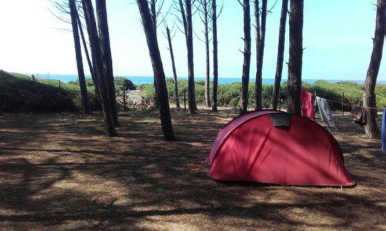 Camping Pineta la Foce