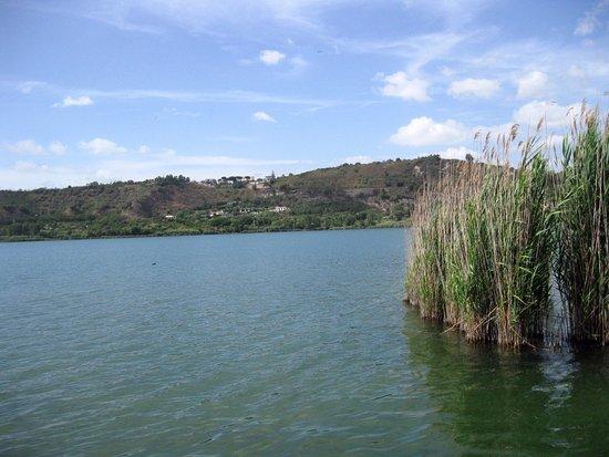 Il vicino lago di lucrino foto di lago d 39 averno for Lago lucrino