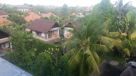 KajaNe Mua Private Villa & Mansion : 20160801_090242_large.jpg
