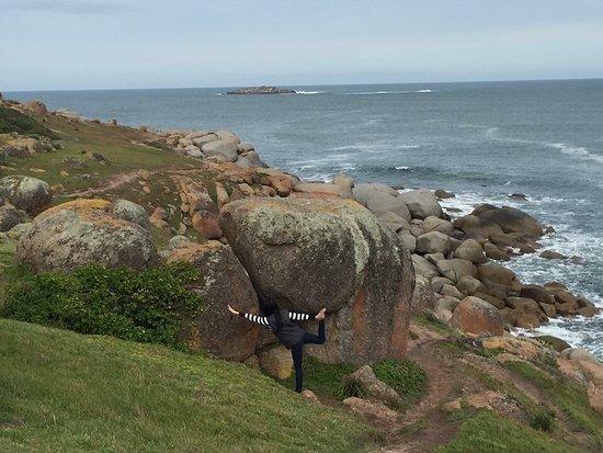 Granite Island - Victor Harbour: photo3.jpg
