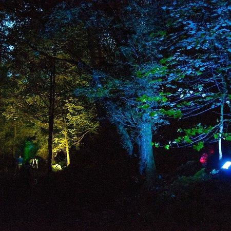Mugdock Country Park: photo8.jpg