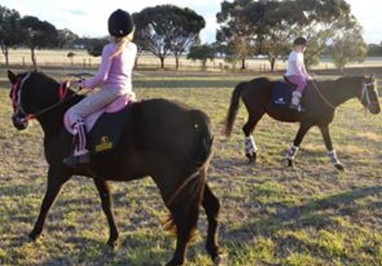 Barossa Equestrian Academy