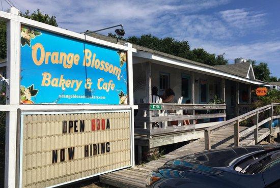 Orange Blossom Bakery : Front of Bakery