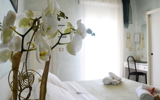 Photo of Hotel Dei Platani Rimini