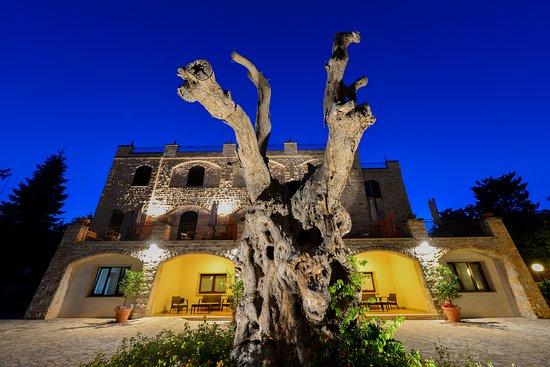 Miramonti Hotel: foto esterna 8