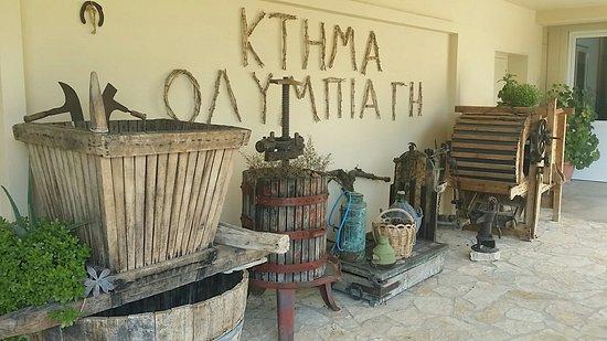 Olympia Land Winery : 20160806_203849_large.jpg