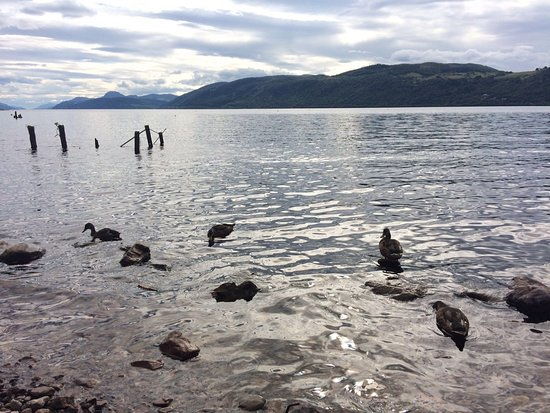 Dores, UK: Loch Ness