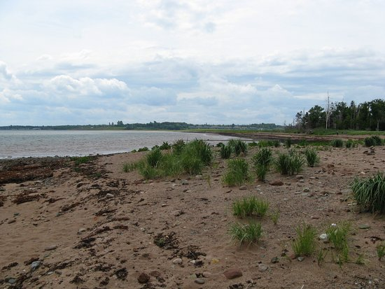 Pictou, Kanada: From island, looking back.
