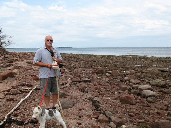 Pictou, Canadá: Rocky section of island.