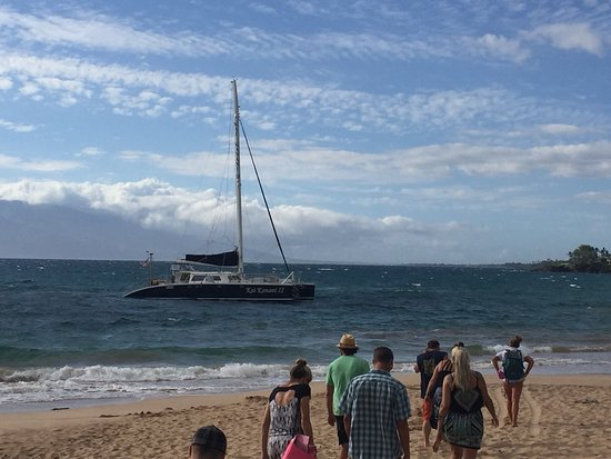 Kai Kanani Sailing Charters: photo1.jpg
