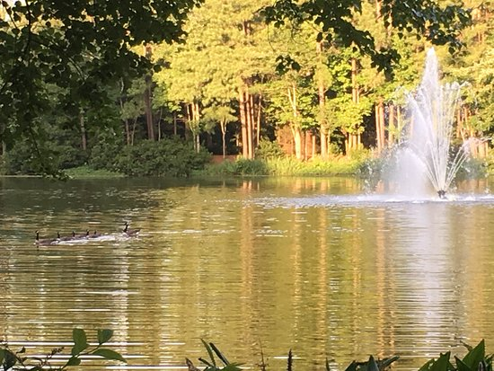The Umstead Hotel and Spa: Pond surrounded by paved trail and wildlife