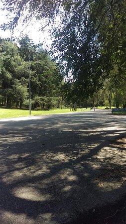 Parco Forlanini : IMAG1004_large.jpg