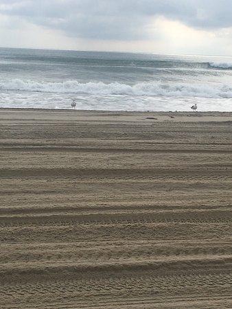 Carova Beach: photo0.jpg