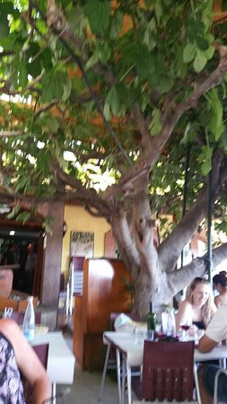 Palau-Saverdera, Spagna: TA_IMG_20160806_160616_large.jpg
