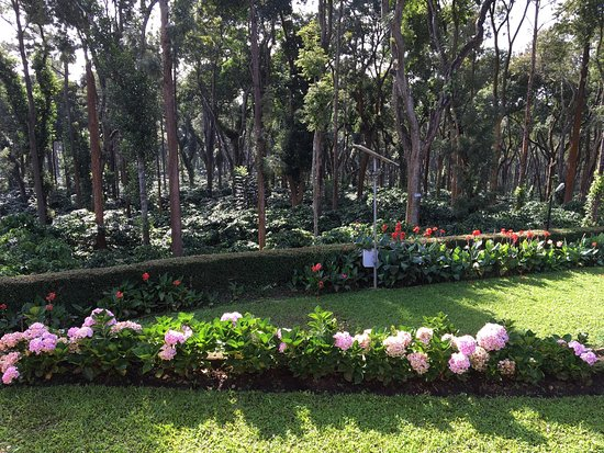 photo4.jpg - Picture of Plantation Trails by Tata Coffee ...