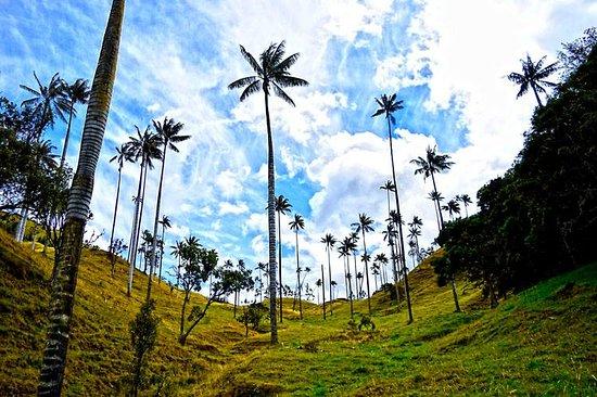 Colombia Viajes