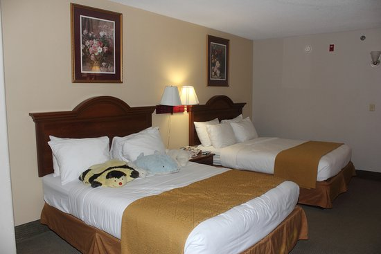 Quality Inn & Suites: Hotel room