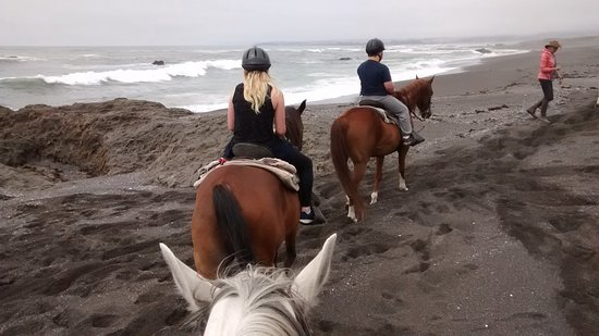 Ricochet Ridge Ranch: MacKerricker State Beach