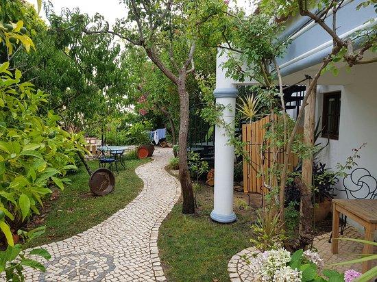 Uma Casa a Beira Sol: 20160729_141738_large.jpg