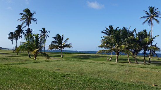 Costa Sur, Saint Kitts: Royal St. Kitts Golf Course Back 9