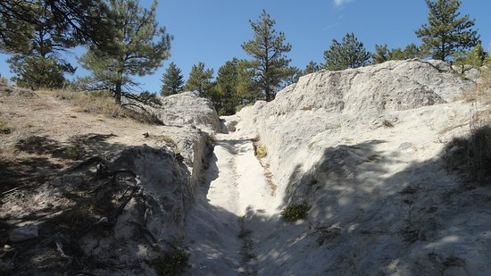 Oregon Trail Ruts