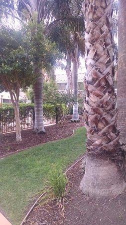 Wyndham Garden San Jose Airport: TA_IMG_20160806_094839_large.jpg